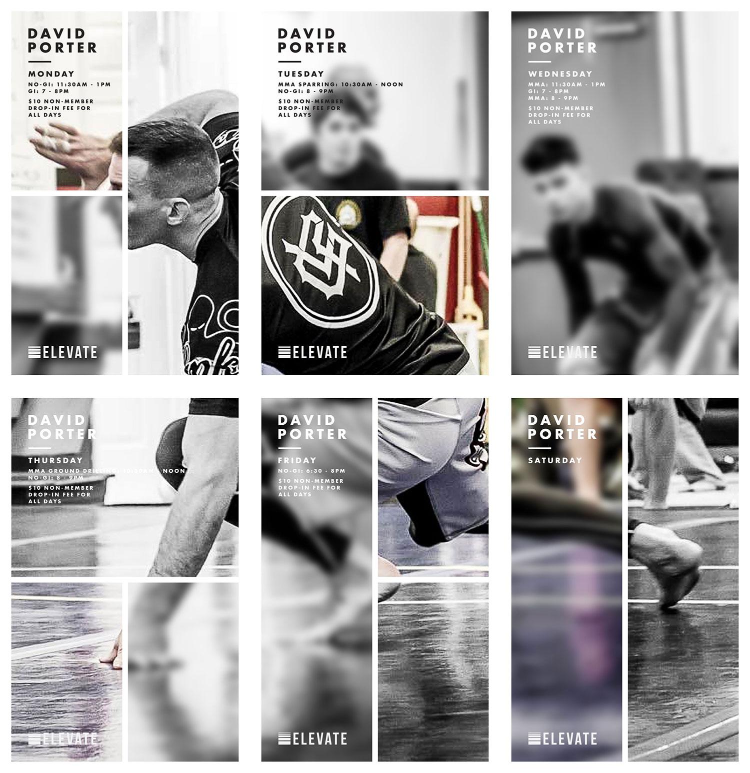 Elevate MMA Academy David Porter Poster